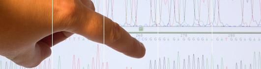 STR DNA testing methodology